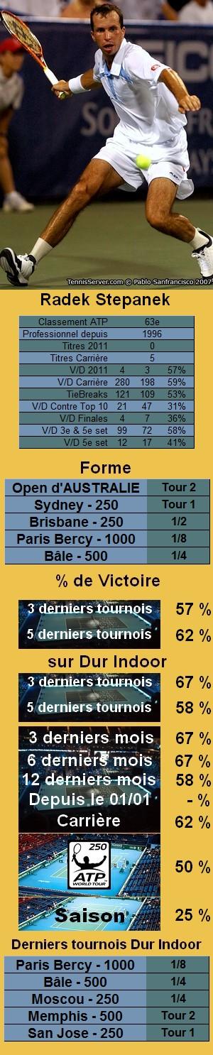 Statistiques tennis Radek Stepanek