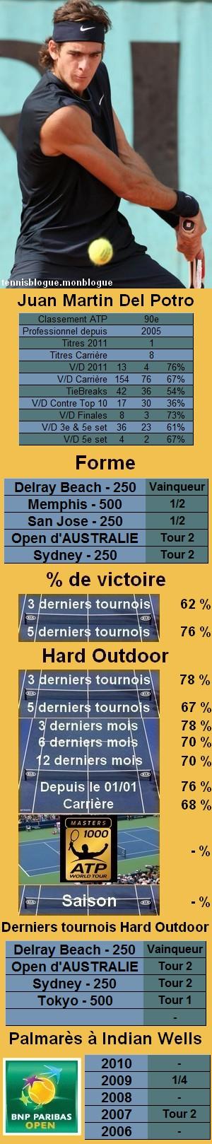 Statistiques tennis Juan Martin Del Potro