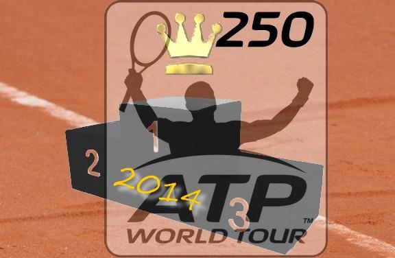 Qui est le plus performant dans les ATP 250 sur tere battue